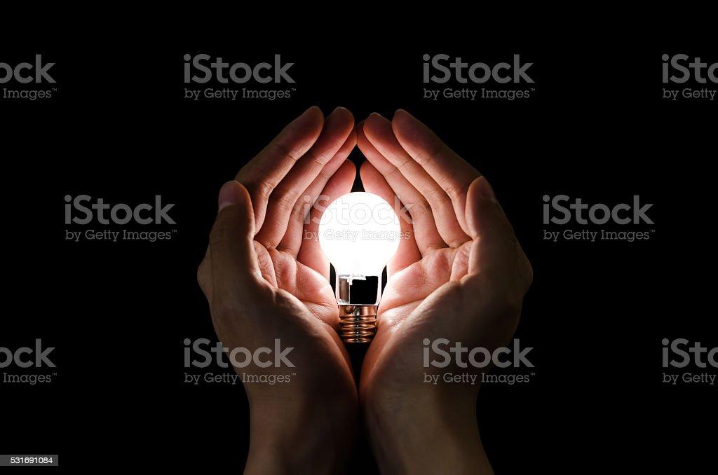 Light bulb in hands stock photo
