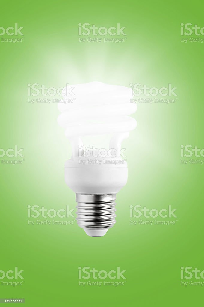 Light Bulb (Click for more) royalty-free stock photo