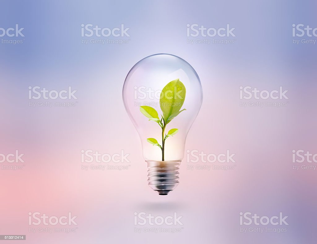light bulb with energy and fresh green leaves inside stock photo