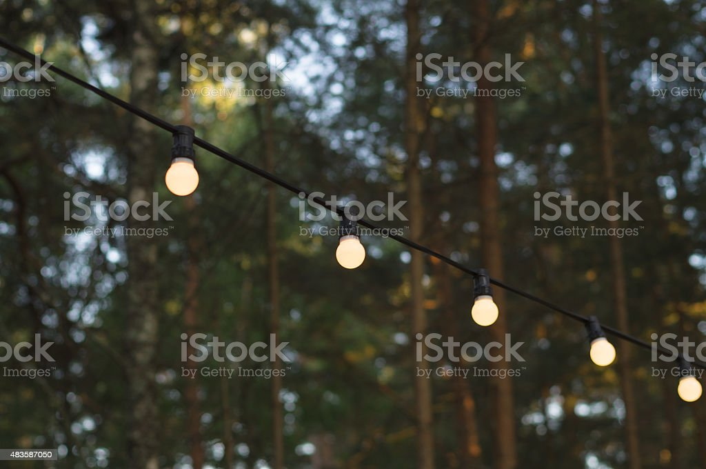 Light bulbs on a wire against wood, blurred background stock photo