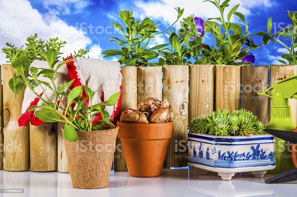 Light garden composition with gardening equipment royalty-free stock photo