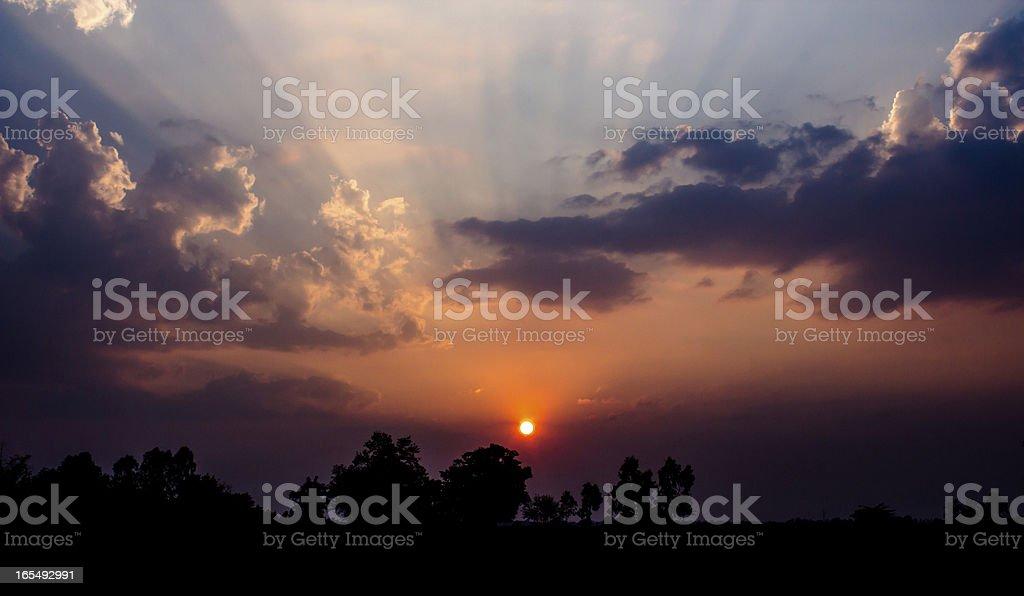 Light of Sunset royalty-free stock photo