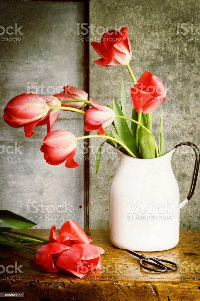 Light Painted Still Life of Tulips In A Vintage Jug royalty-free stock photo