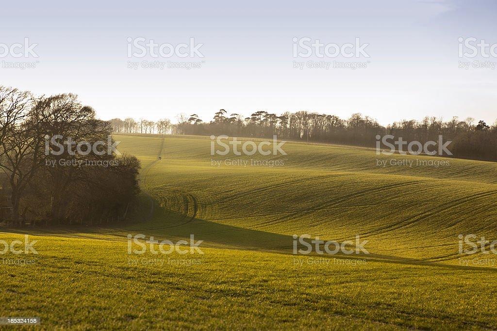 Light & Shade on the North Downs stock photo