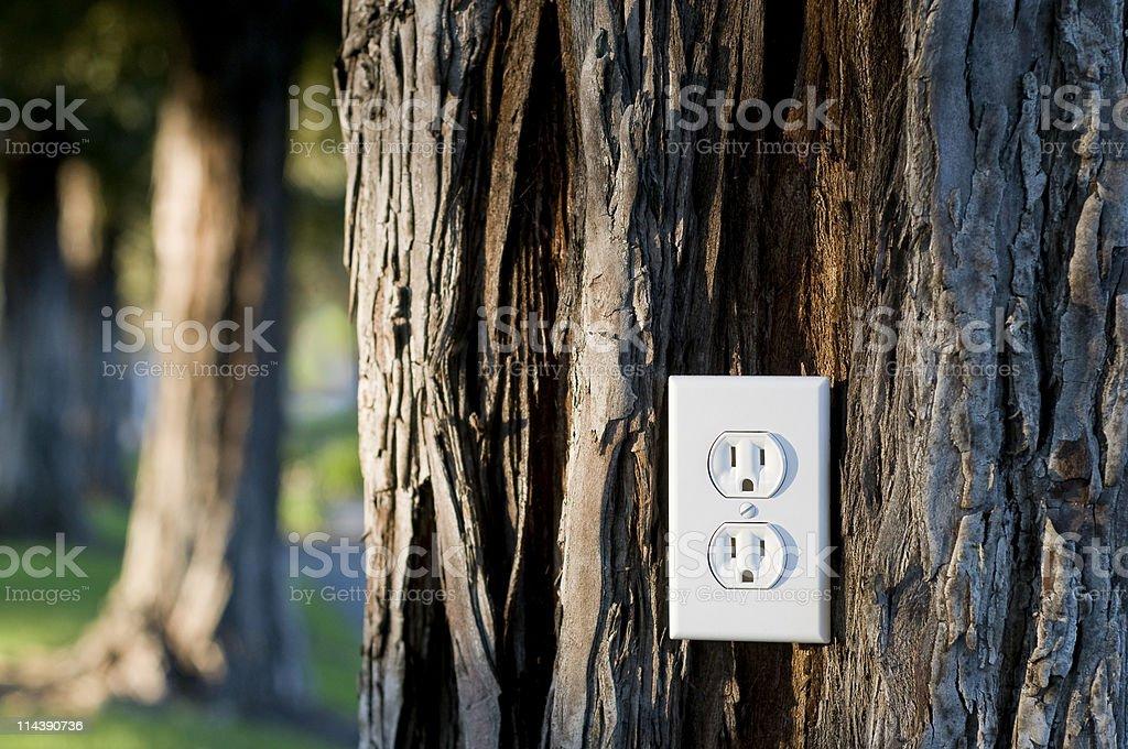 Luz conector hembra foto de stock libre de derechos