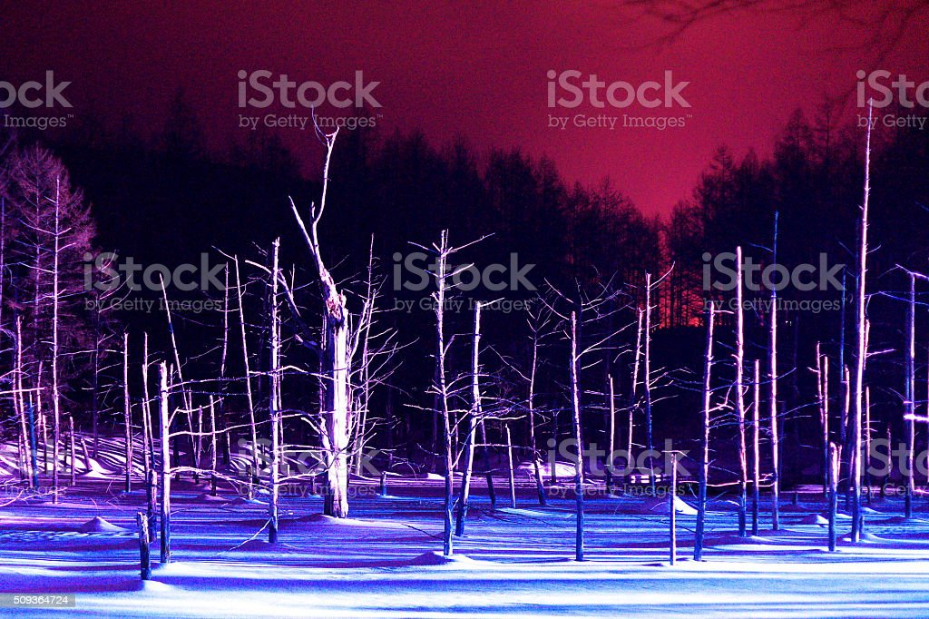 Light up in a blue pond stock photo