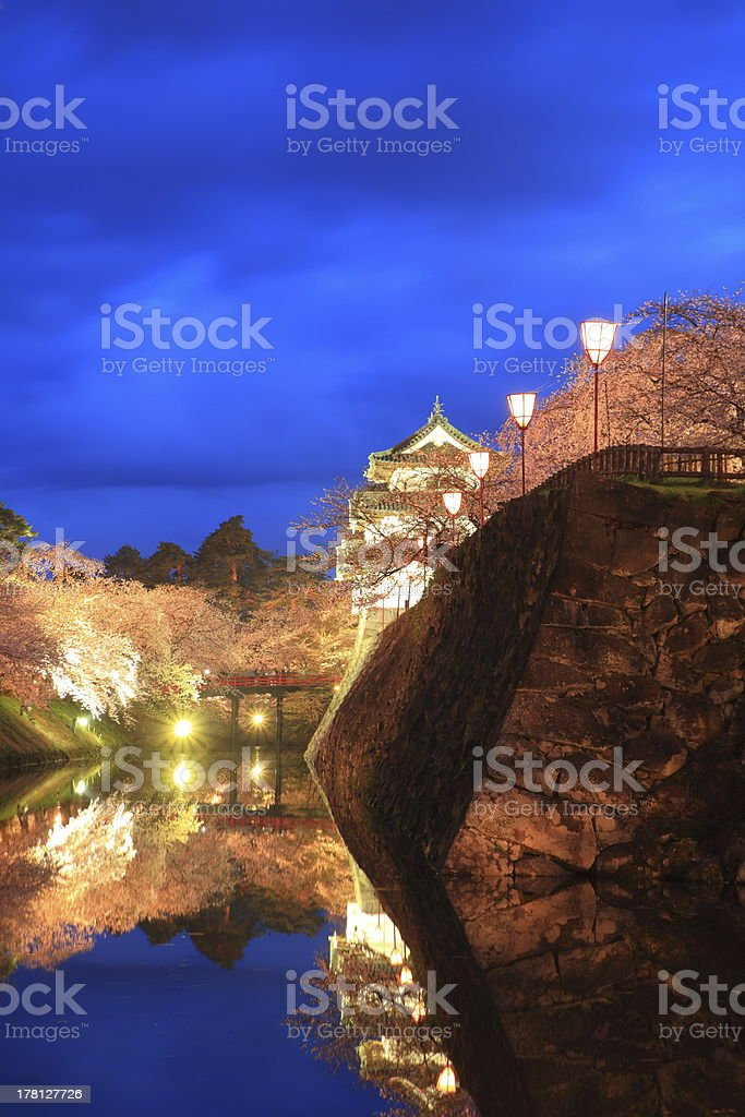 Light up of Hirosaki castle and cherry blossoms stock photo