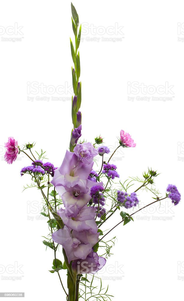 Light violet bunch of flowers stock photo