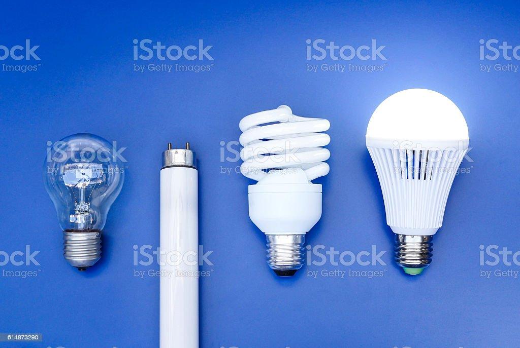 Lightbulb evolution stock photo