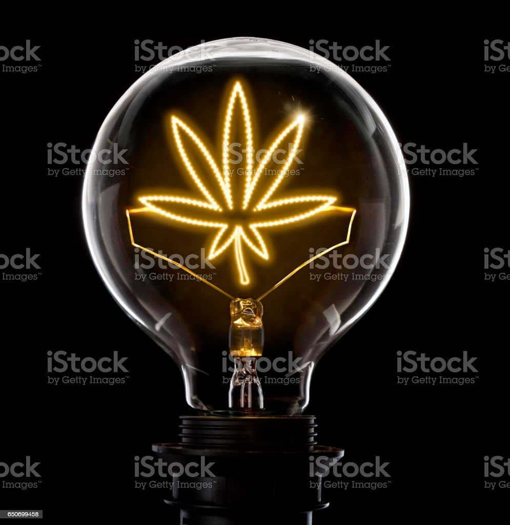 Lightbulb with a glowing wire in the shape of a weed leaf (series) stock photo