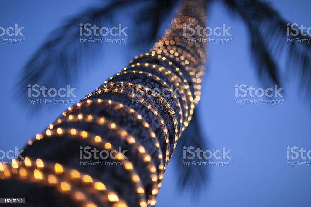 lighted coconut royalty-free stock photo