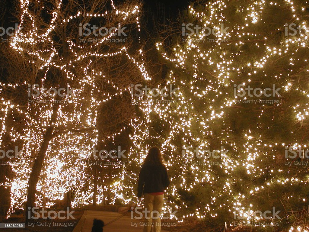 Lighted Path royalty-free stock photo