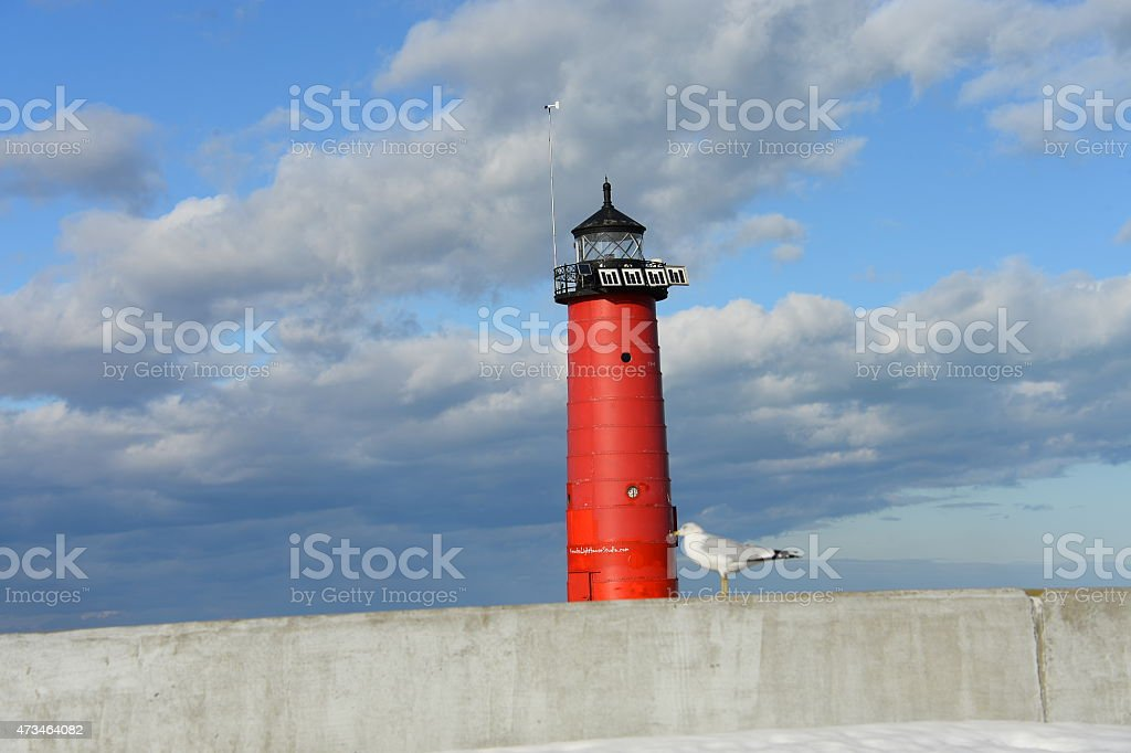Lighthouse and gull stock photo