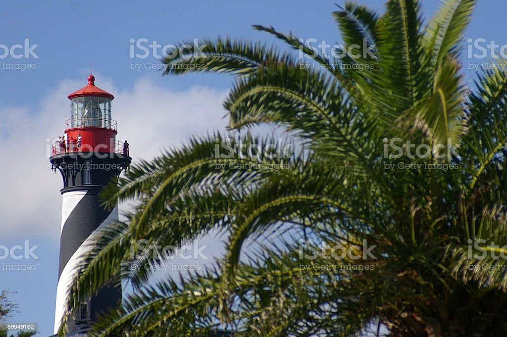 Lighthouse and tropical palm stock photo