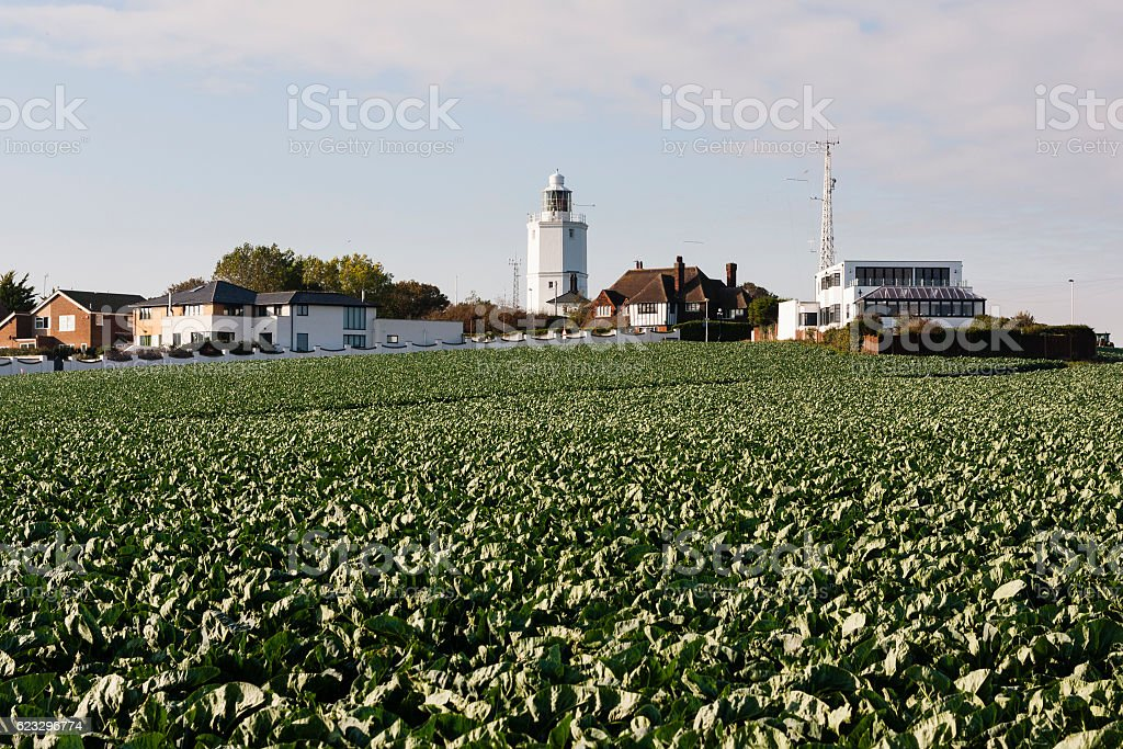 Lighthouse at Joss Bay near Margate in Thanet, Kent, England stock photo