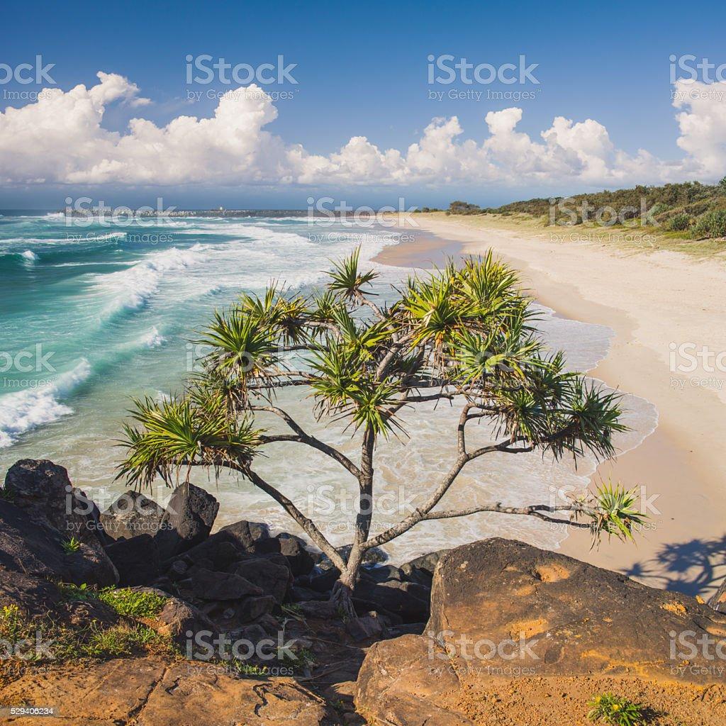 Lighthouse Beach Ballina stock photo
