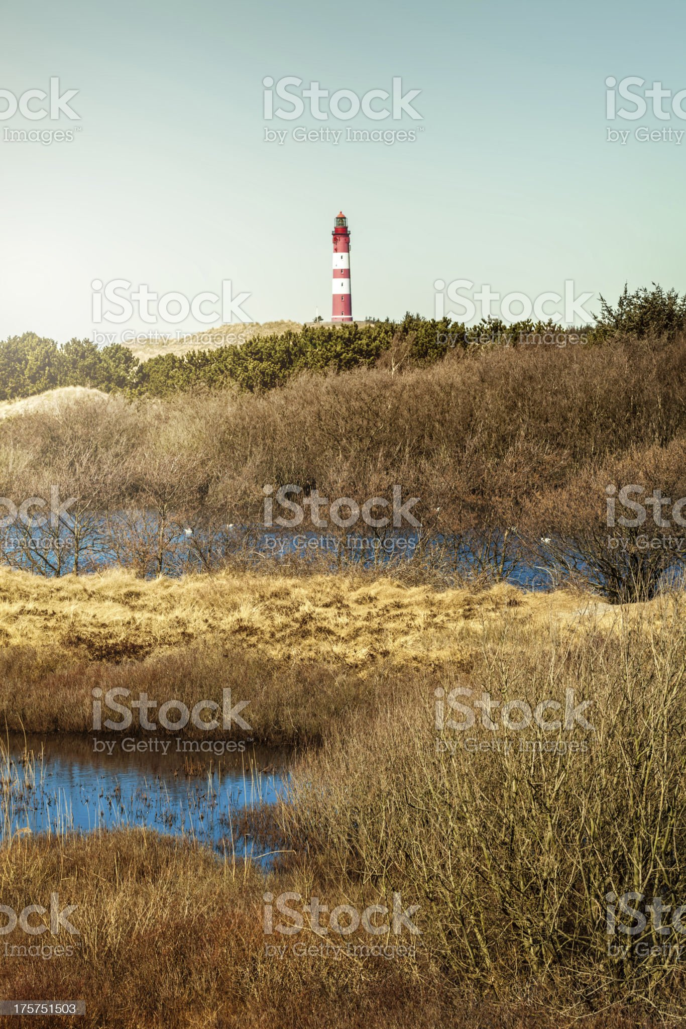 Lighthouse in the dunes royalty-free stock photo
