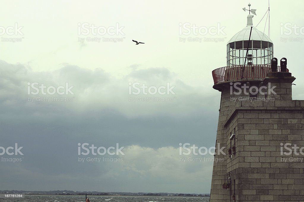 Lighthouse with a seagull stock photo