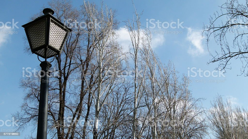 Lightpost and branches stock photo