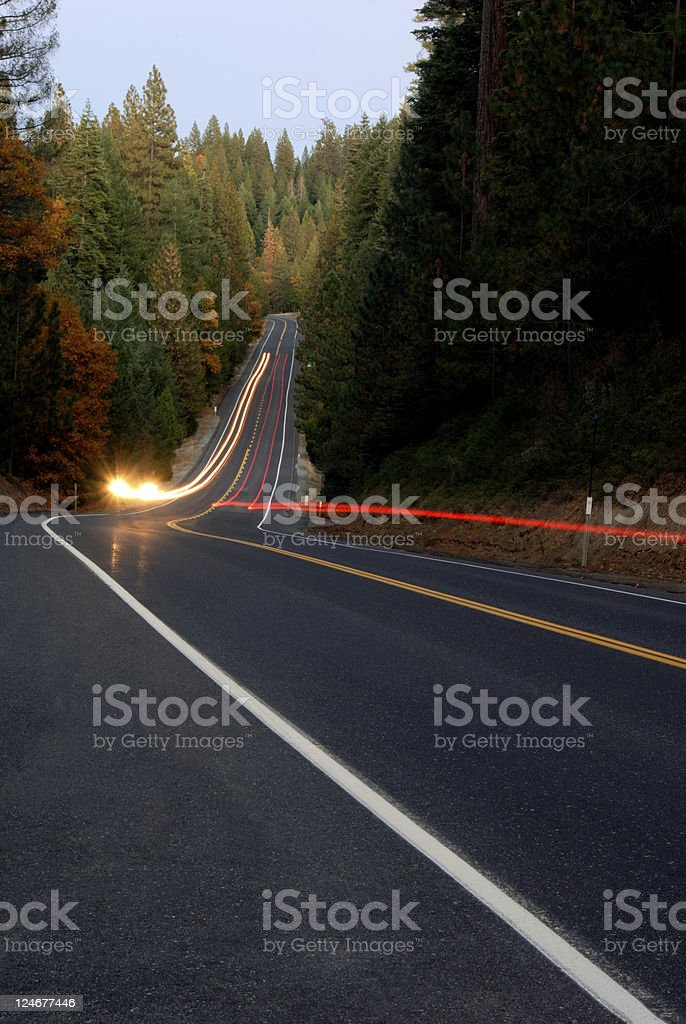 Lightstreaks on Forest Highway stock photo