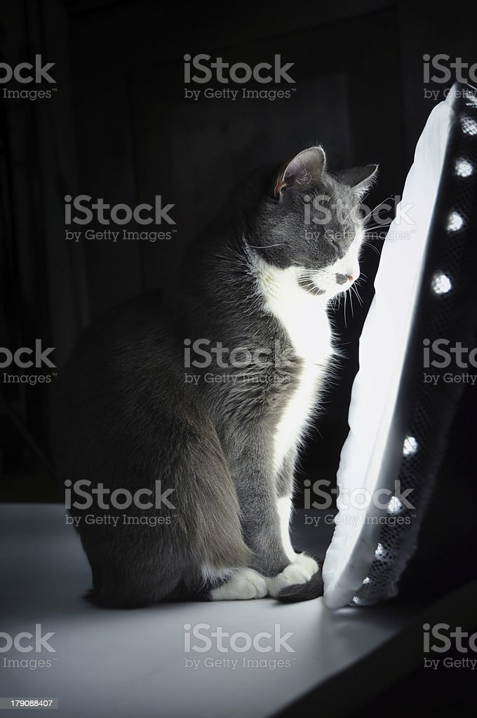 Lighttherapy stock photo