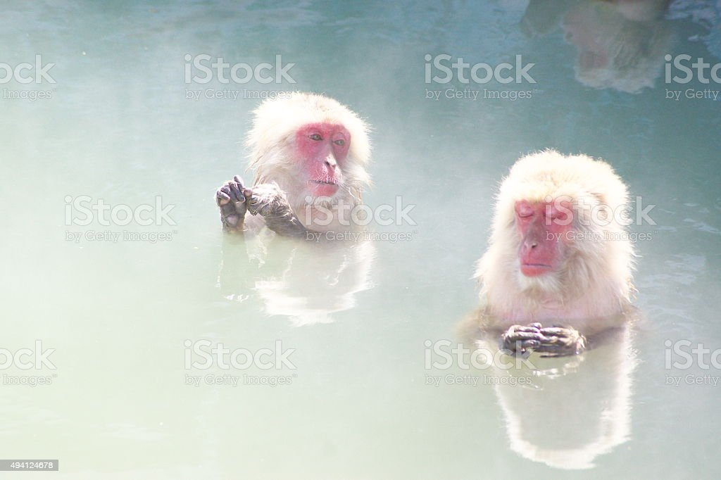 I like a hot spring very much. stock photo