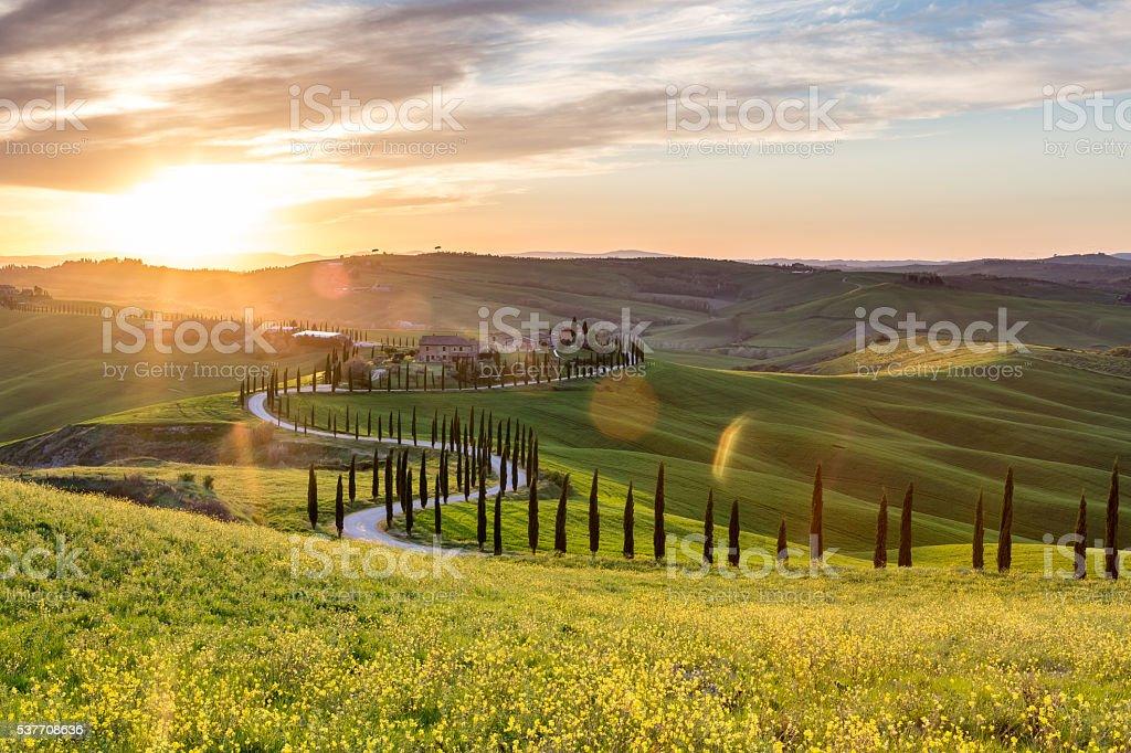 Like a snake - Tuscan countryside stock photo