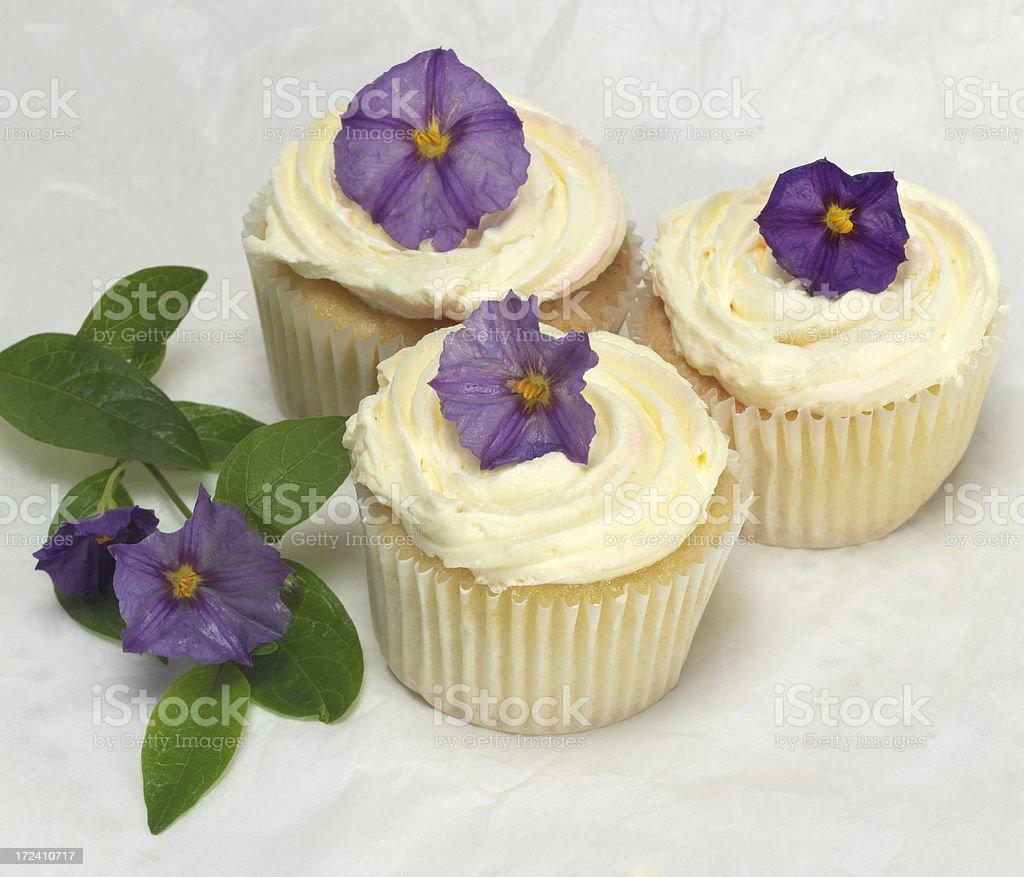 Lilac Cupcakes royalty-free stock photo