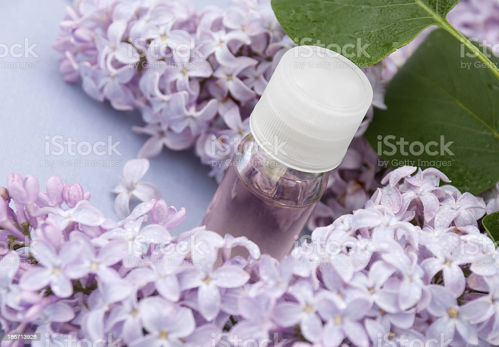 Lilac Essential Oil royalty-free stock photo