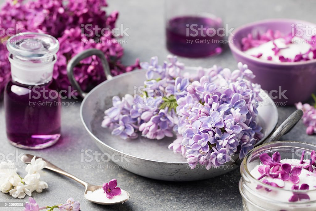 Lilac flowers sugar and syrup, essential oil with flower blossoms stock photo