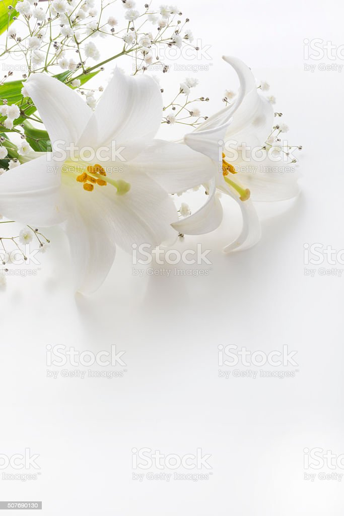 Lilies and others are on white table stock photo