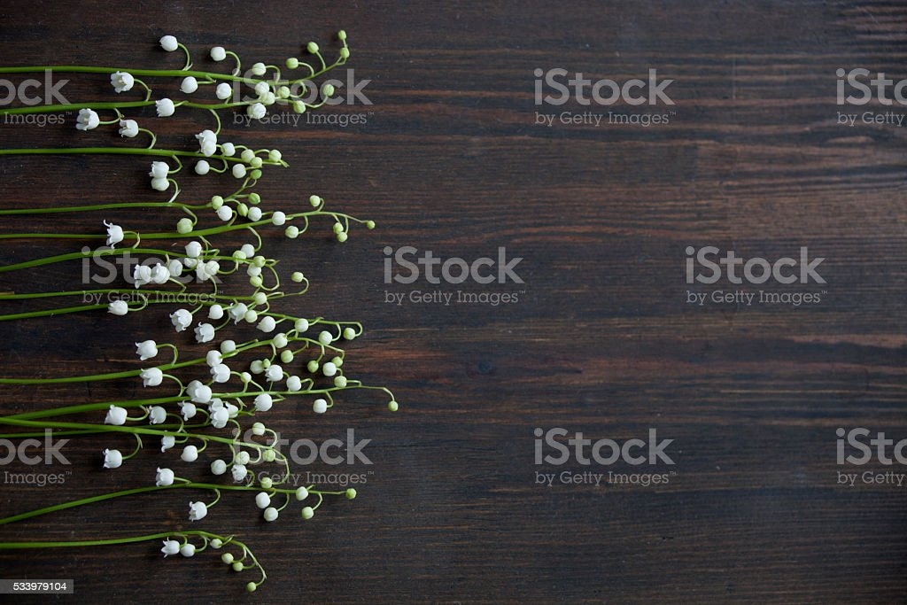 Lilies of the valley on a dark wooden background stock photo