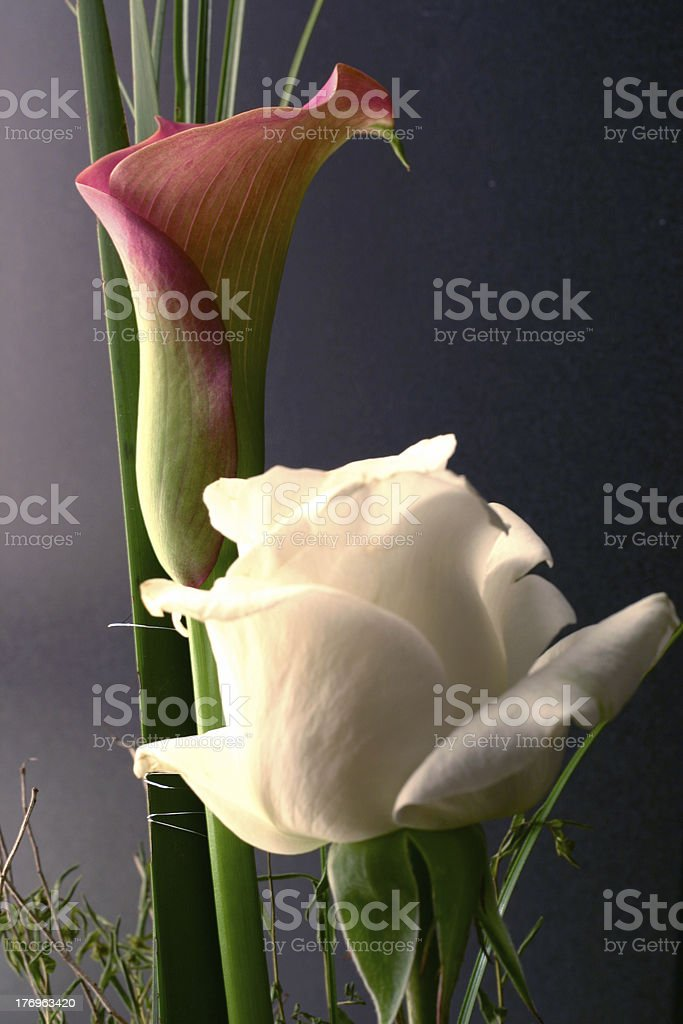 lilly and rose royalty-free stock photo