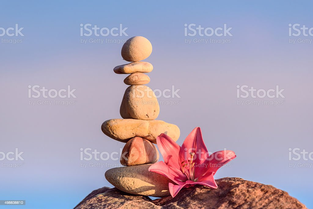 Lily at stack of pebbles stock photo