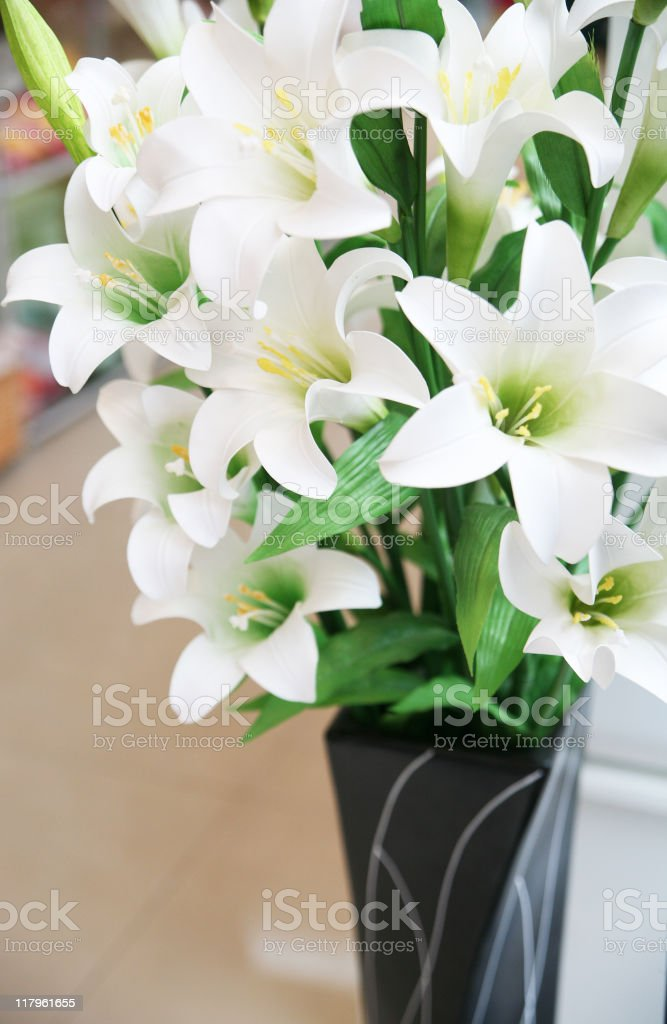lily in the vase royalty-free stock photo