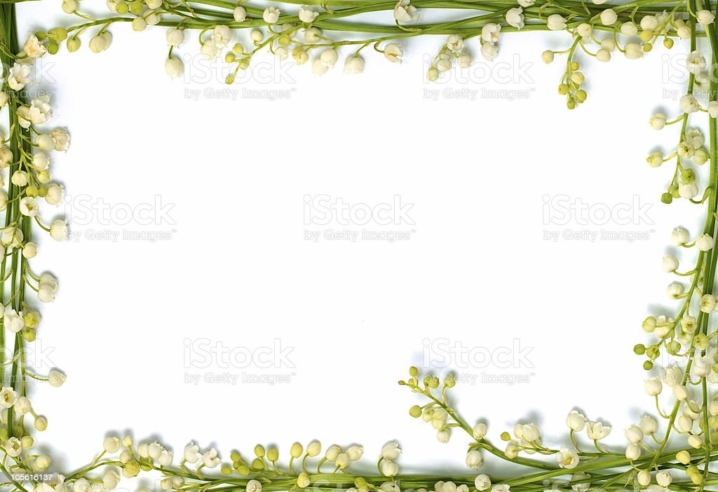 Lily of the valley flowers paper frame border background stock photo