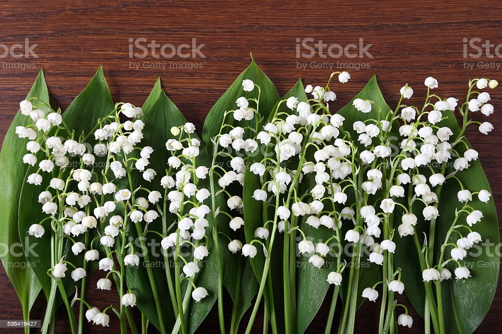 Beautiful floral frame with lilies of the valley flowers on wooden...