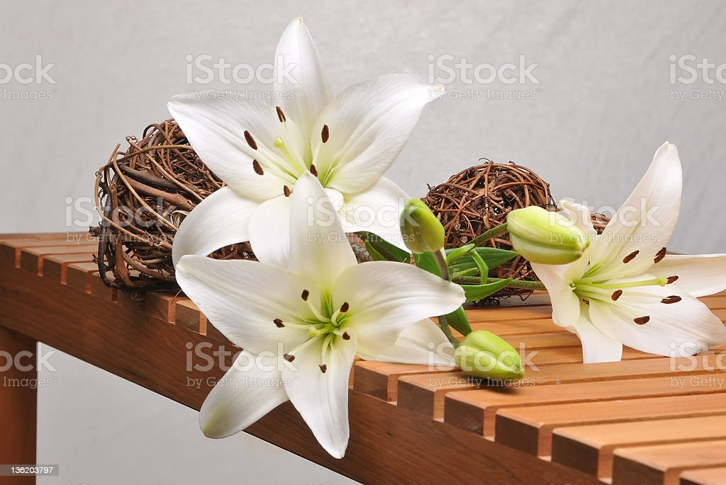 Lily on wood royalty-free stock photo