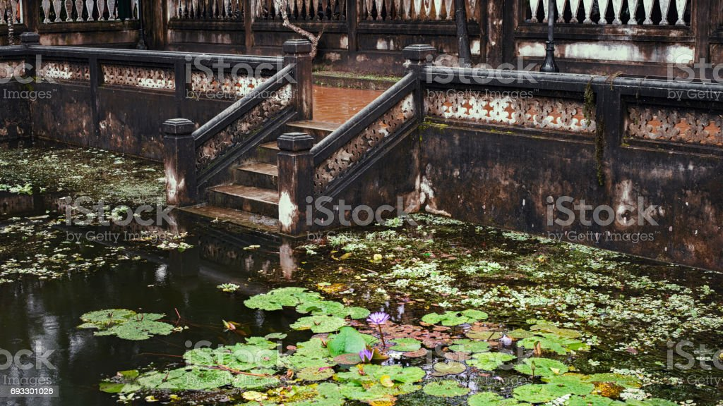 lily pond near the Confucian Temple, Hoi An, Quang Nam Province, Vietnam stock photo