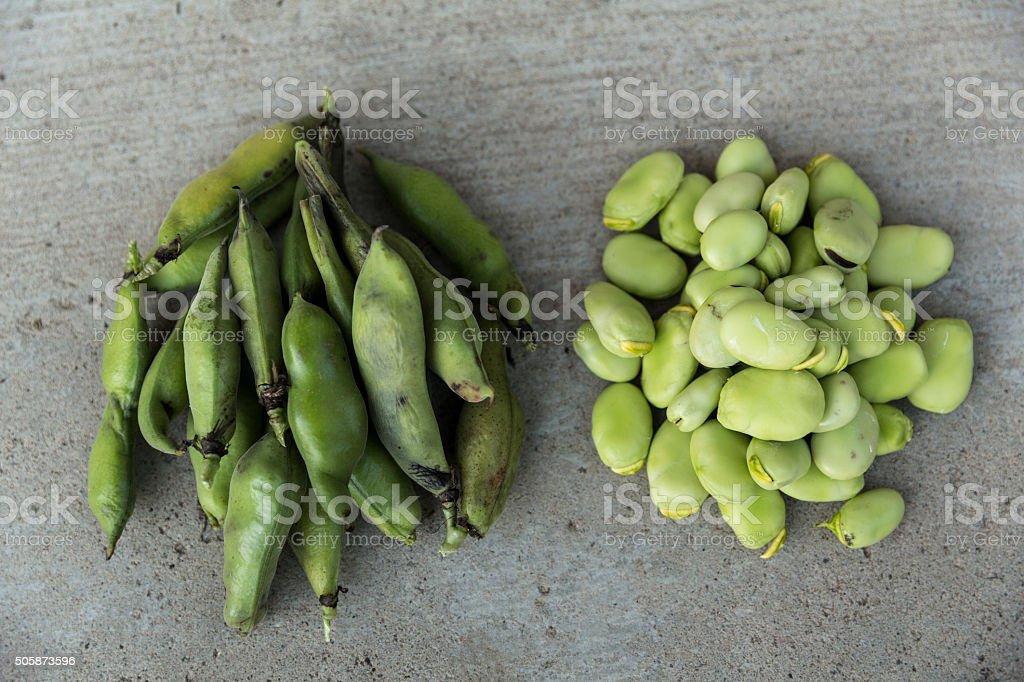 Lima Bean and pod stock photo