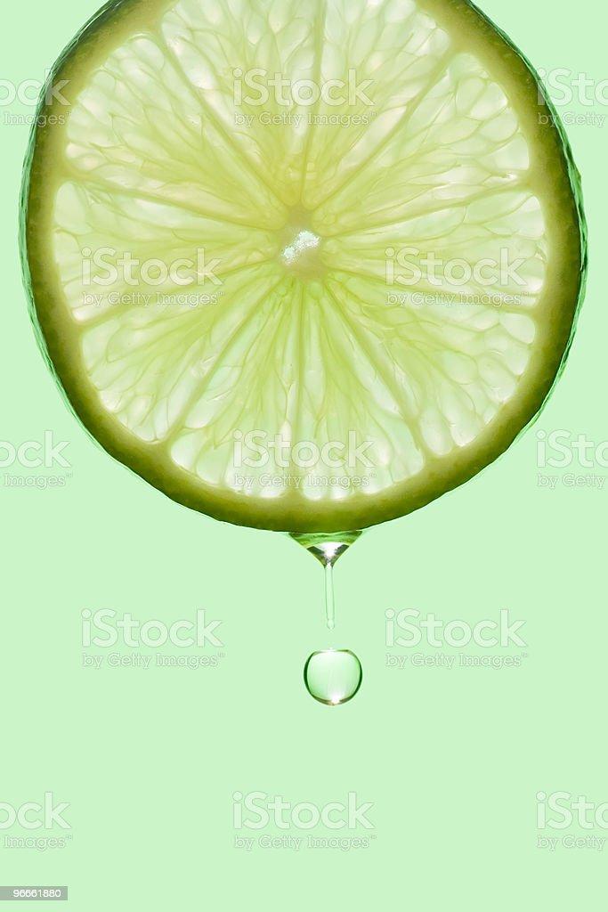 Lime Drop stock photo