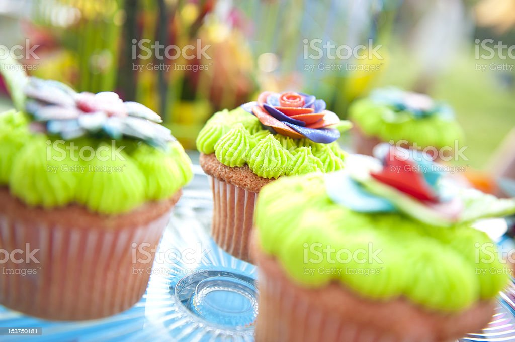 Lime Green Colorful Cup Cakes royalty-free stock photo