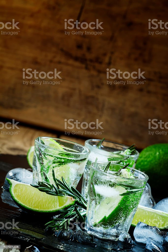 Lime Lemonade with rosemary and ice, dark toned image stock photo