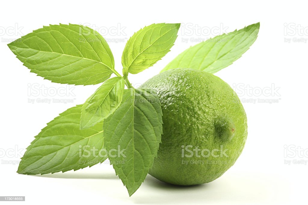 Lime with Mint Leaves royalty-free stock photo