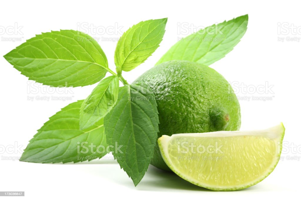 Lime with Mint royalty-free stock photo
