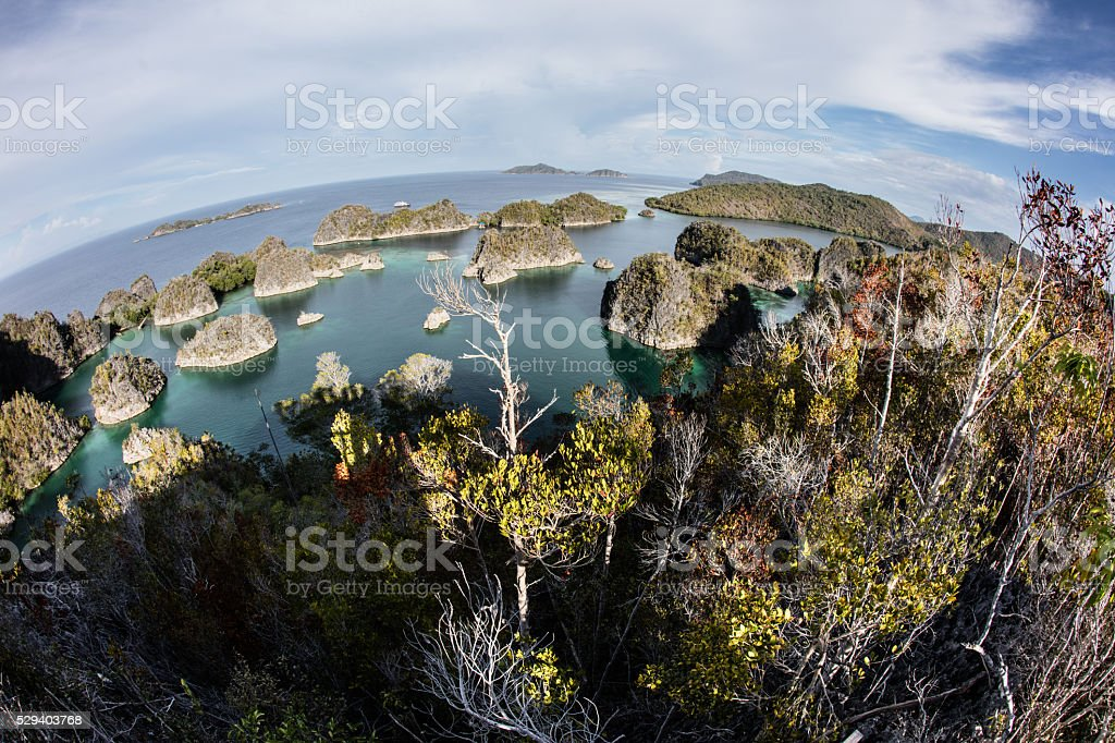 Limestone Islands and Tropical Lagoon in Raja Ampat stock photo