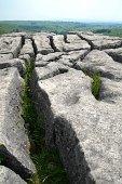 Limestone pavement, Yorkshire, England