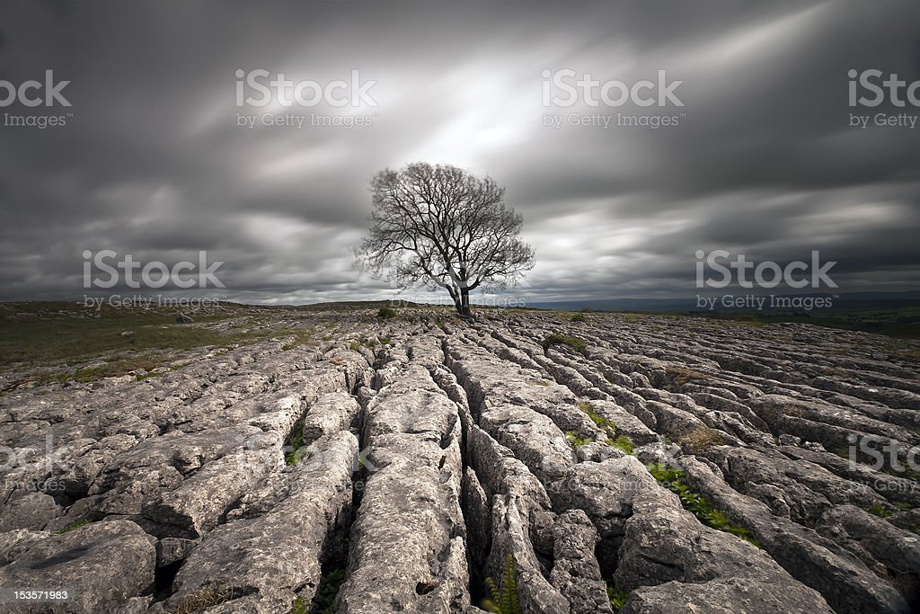 limestone pavements royalty-free stock photo