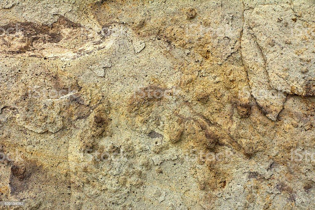 limestone texture stock photo