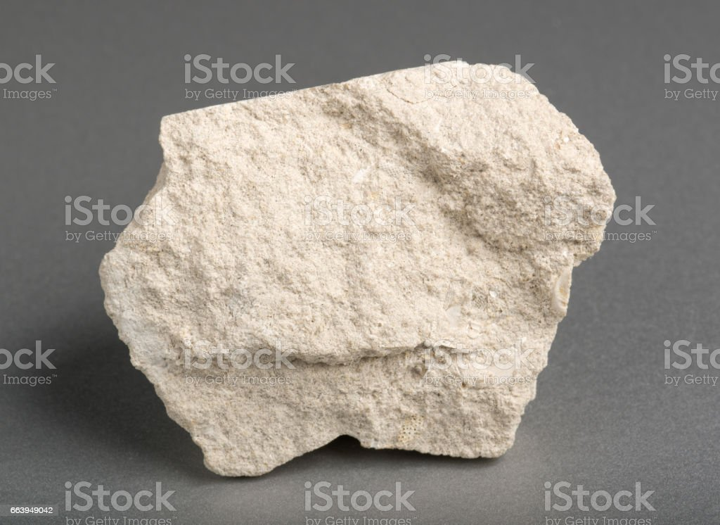 Limestone with inclusions of sea shells on gray background. Limestone is a sedimentary rock  composed of skeletal fragments of marine organisms. stock photo